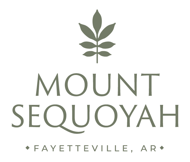 MountSequoyahUPDATED